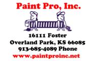 Paint-Pro-193x120